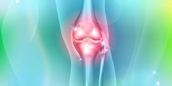 skeletal joint